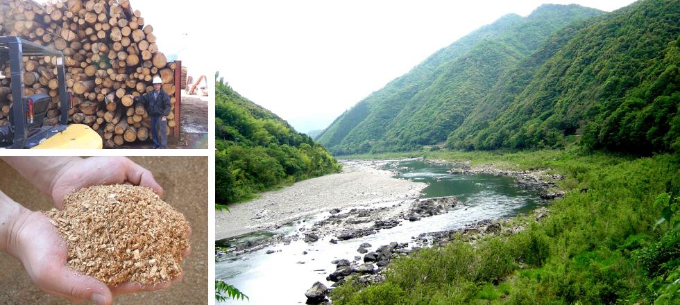 椎材と四万十川の風景が並んだ写真